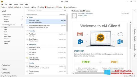 স্ক্রিনশট eM Client Windows 8.1