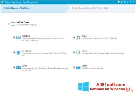 স্ক্রিনশট EaseUS Data Recovery Wizard Windows 8.1