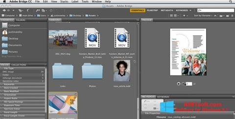 স্ক্রিনশট Adobe Bridge Windows 8.1
