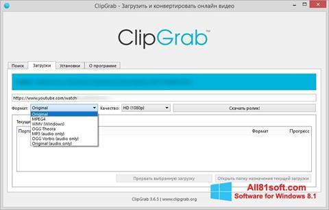 স্ক্রিনশট ClipGrab Windows 8.1