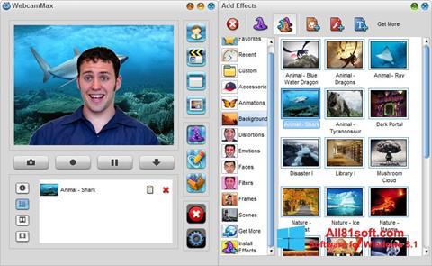 স্ক্রিনশট WebcamMax Windows 8.1