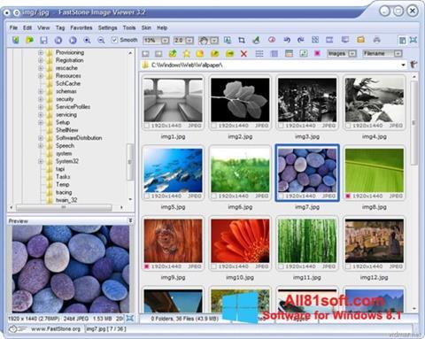 স্ক্রিনশট FastStone Image Viewer Windows 8.1