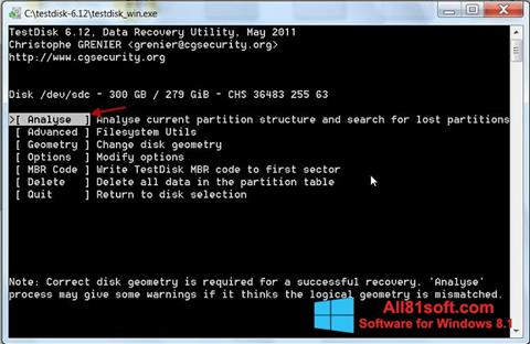 স্ক্রিনশট TestDisk Windows 8.1