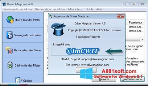 স্ক্রিনশট Driver Magician Windows 8.1