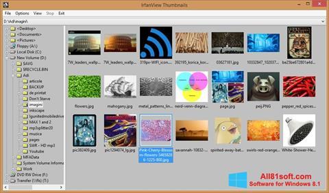 স্ক্রিনশট IrfanView Windows 8.1
