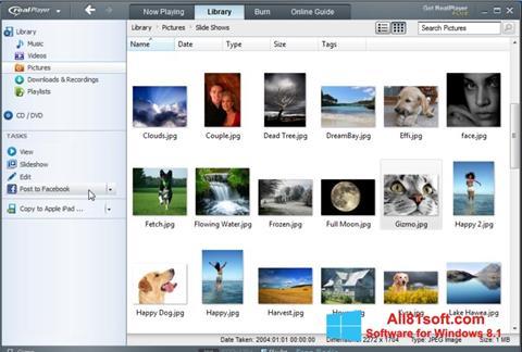 স্ক্রিনশট RealPlayer Windows 8.1